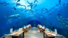Top 5 restaurante ciudate