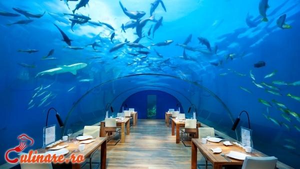 Foto - Top 5 restaurante ciudate