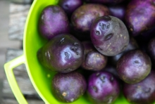 Despre cartofii mov