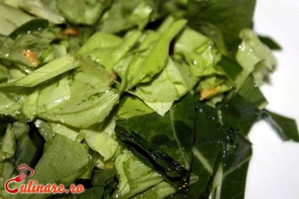 Foto - Salata de leurda